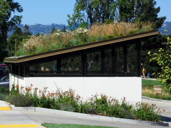 Lake Merritt Green Roof