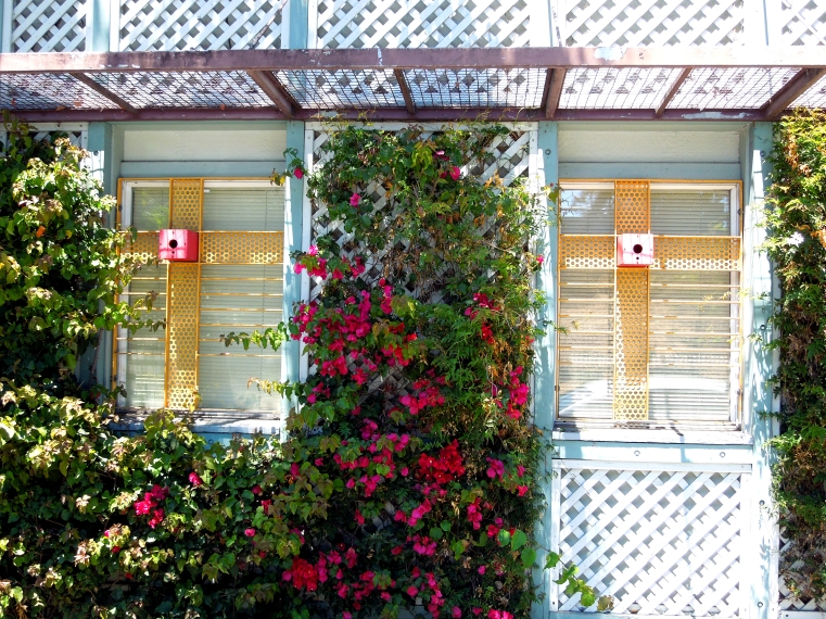120719 Longfellow 2 birdhouse windows
