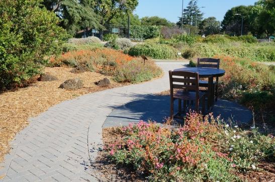 Pervious paving at native demo garden,  Taylor & Walnut, San Jose