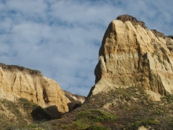 Cowell Ranch Cliffs