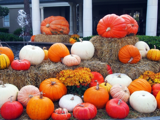 The squashes at the resort entrance were one seasonal touch that fit with the locale