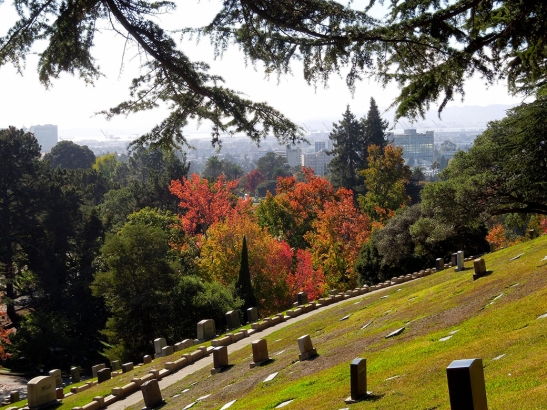 141101 Mtn View Cemetery-fall color-web