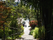 141029-Sausalito-stairs