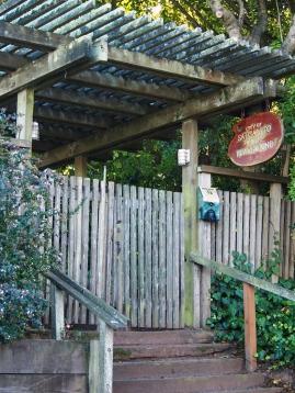 141029-Sausalito playground