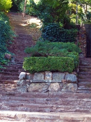 141029-Sausalito-stone steps