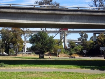 Grove-shafter park aptly named after a freeway